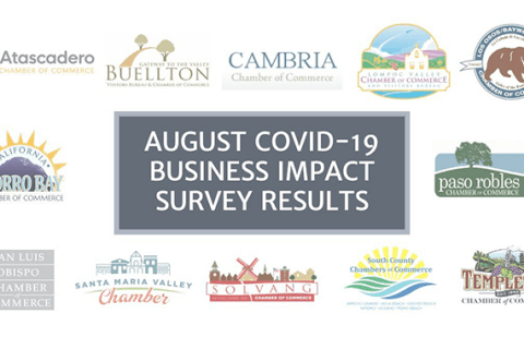 chamber survey results
