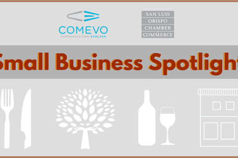 small business spotlights