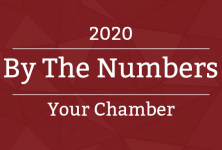 by the numbers 2020